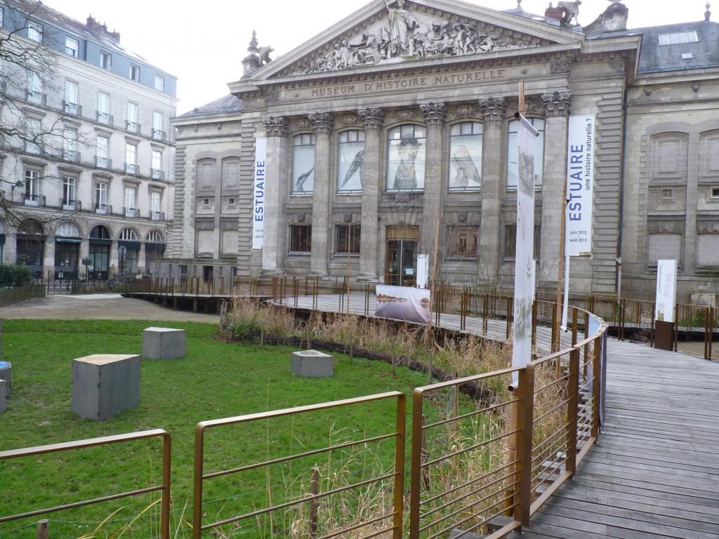 Estuaire au Museum d'Histoire Naturelle de Nantes dans actualités de l'art p1030143